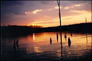 Click image for larger version  Name:evening fishing  1.JPG Views:149 Size:109.3 KB ID:8315