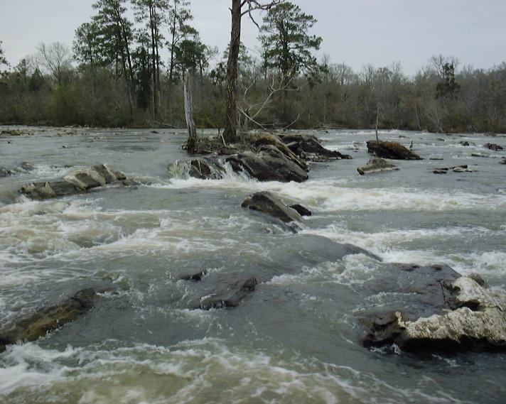Ocmulgee river fishing report for Georgia fishing report