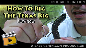 How To Texas Rig