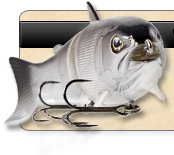 BBZ-1 Swimbait